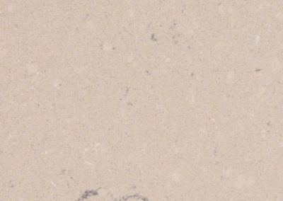 Fossil Taupe